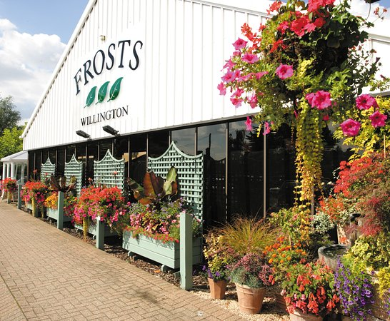 Willington Garden Centre